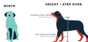 HOW TO MEASURE YOUR DOG FOR A DOGGY DOOR?